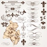 Sistema del vector de elementos del diseño del vintage y de deco caligráficos de la página Imagen de archivo