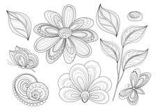 Sistema del vector de elementos monocromáticos hermosos del diseño floral con los insectos stock de ilustración