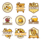 Sistema del vector de etiquetas de la miel, de insignias de la abeja y de elementos coloreados del diseño Plantilla del logotipo  Fotografía de archivo
