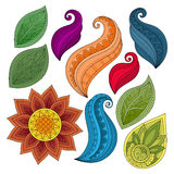 Sistema del vector de flores y de hojas coloreadas del contorno Foto de archivo
