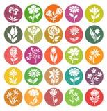 Sistema del vector de iconos de la flor Fotos de archivo libres de regalías