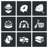 Sistema del vector de iconos de los accesorios del baño y de la sauna libre illustration