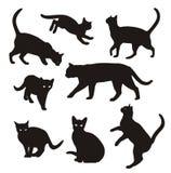Sistema del vector de la silueta del gato aislado en el fondo blanco imagenes de archivo