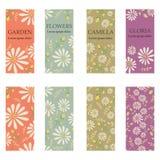 Sistema del vector de las banderas verticales coloridas para el negocio y la invitación Ornamentos florales rústicos Imitación de libre illustration