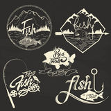 Sistema del vector de las etiquetas del club de la pesca, elementos del diseño Fotos de archivo