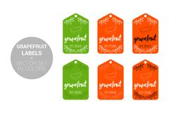 Sistema del vector de las etiquetas de Eco de la fruta del pomelo en colores verdes, anaranjados stock de ilustración