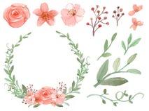 Sistema del vector de las flores y de las hojas Fotografía de archivo libre de regalías
