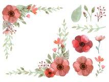 Sistema del vector de las flores y de las hojas Stock de ilustración