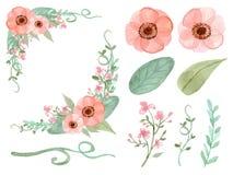 Sistema del vector de las flores y de las hojas Imágenes de archivo libres de regalías