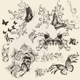 Sistema de mariposas afiligranadas con el ornamento para el diseño Imagen de archivo