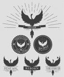 Sistema del vector de logotipos del vintage del símbolo de Phoenix, de emblemas, de siluetas y de elementos del diseño Logotipos  Imágenes de archivo libres de regalías