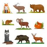 Sistema del vector de los animales del mamífero en diseño plano del estilo Colección de los iconos de la historieta del parque zo Imagen de archivo libre de regalías