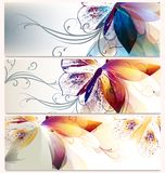 Sistema del vector de los fondos florales para el diseño Imágenes de archivo libres de regalías