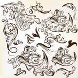 Sistema del vector de los ornamentos dibujados mano del remolino para el diseño del vintage Imagenes de archivo