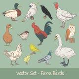 Sistema del vector de los pájaros de la granja Fotos de archivo libres de regalías