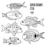 Sistema del vector de pescados estilizados exhaustos de la mano libre illustration