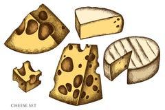Sistema del vector de queso coloreado exhausto de la mano ilustración del vector