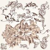 Sistema del vector de remolino dibujado mano y de elementos florales en el st del vintage Fotos de archivo libres de regalías