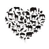 Sistema del vector de siluetas animales muy detalladas con nombre Imagen de archivo libre de regalías