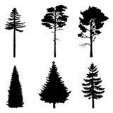 Sistema del vector de siluetas negras de los árboles de pino libre illustration