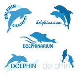 Sistema del vector del diseño del dolphinarium de logotipo Imágenes de archivo libres de regalías