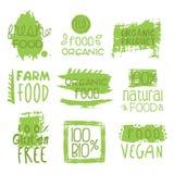 Sistema del verde de la comida del vegano de la granja de la etiqueta Fotografía de archivo libre de regalías