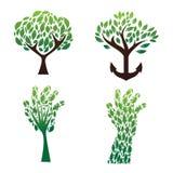 Vector determinado del verde del árbol Foto de archivo