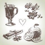 Sistema del vino, de la fruta y de la especia reflexionados sobre stock de ilustración