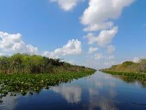 Sistema di canali dei terreni paludosi Fotografia Stock
