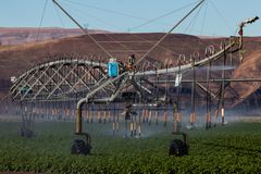 Sistema di innaffiatura dello spruzzatore dello spruzzo del campo di irrigazione del raccolto Fotografie Stock Libere da Diritti