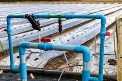 sistema di irrigazione e del fertilizzante di agricoltura Immagini Stock