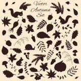 Sistema dibujado mano de elementos del otoño del vector y de siluetas de los animales Imagen de archivo libre de regalías