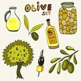 Sistema dibujado mano de la aceituna Sistema de los elementos Aceitunas, aceite de oliva, rama y árbol en fondo Imágenes de archivo libres de regalías