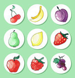 Sistema dibujado mano de la acuarela de frutas de los iconos Ilustración del Vector