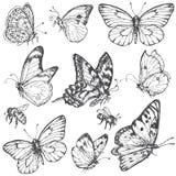 Sistema dibujado mano de mariposas y de abejas