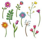 Sistema dibujado mano del clip art de las flores Imagenes de archivo