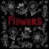 Sistema dibujado mano del vector de las flores Fotografía de archivo