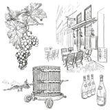 Sistema dibujado mano del vino del vector Fotografía de archivo libre de regalías