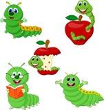 Sistema divertido de la colección de Caterpillar de la historieta stock de ilustración
