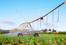 Sistema do pivô da irrigação Foto de Stock