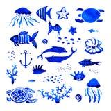 Sistema estilizado dibujado mano de la acuarela de Sealife libre illustration