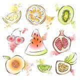 Sistema exótico de la fruta Ejemplo del vector, en blanco Sandía, granada, kiwi, limón y otras frutas jugosas Imagenes de archivo