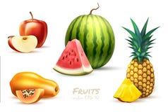 Sistema exótico de la fruta de la manzana de la sandía de la papaya de la piña fotos de archivo libres de regalías