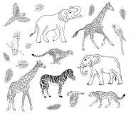 Sistema exhausto de la mano del vector de animales africanos libre illustration