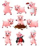 Sistema feliz de la colección de la historieta del cerdo Imágenes de archivo libres de regalías
