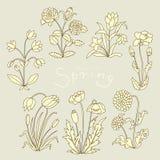 Sistema floral Foto de archivo libre de regalías