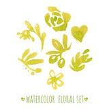 Sistema floral de la acuarela Imagen de archivo