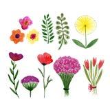Sistema floral de la acuarela de hojas y de flores La acuarela florece la colección para las tarjetas borthday o de la boda de la Foto de archivo
