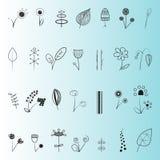 Sistema floral de la decoración Imagenes de archivo