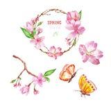 Sistema floral de la primavera de la acuarela con la flor de cerezo, la guirnalda del árbol de Sakura y los butterlies, aislados  stock de ilustración